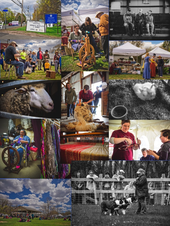 2019 Connecticut Sheep, Wool and Fiber Festival